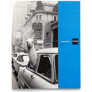 Magnum Photos : Poster Book (Icons)